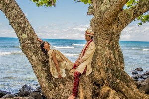 BRIDE AND GROOM SITTING ON A TREE